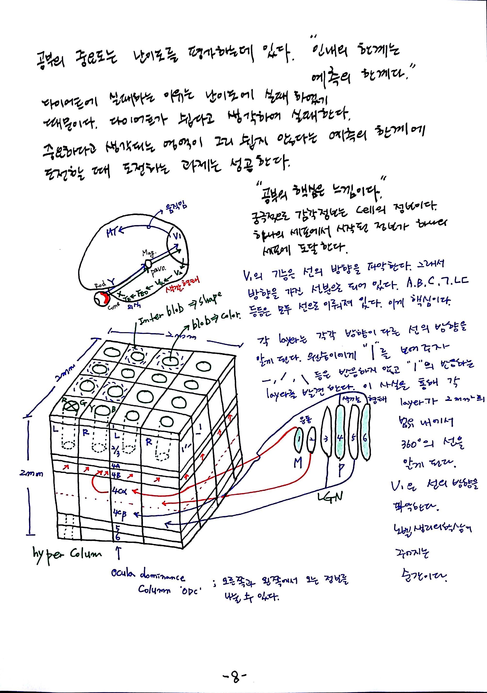 제 6회 특별한 뇌과학 2강 시각2 (8).jpg