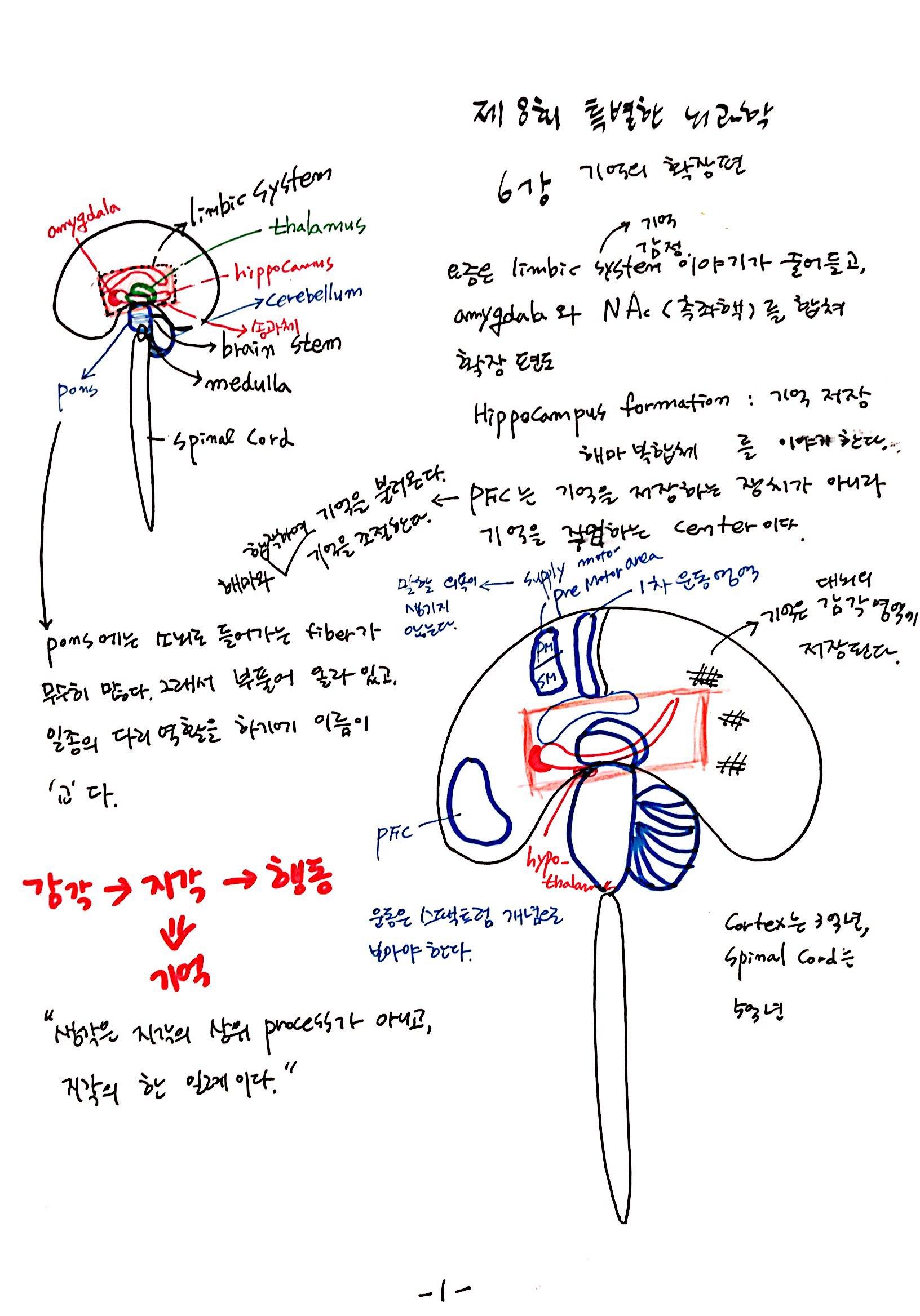 6강 기억의 확장, 꿈 (1).jpg