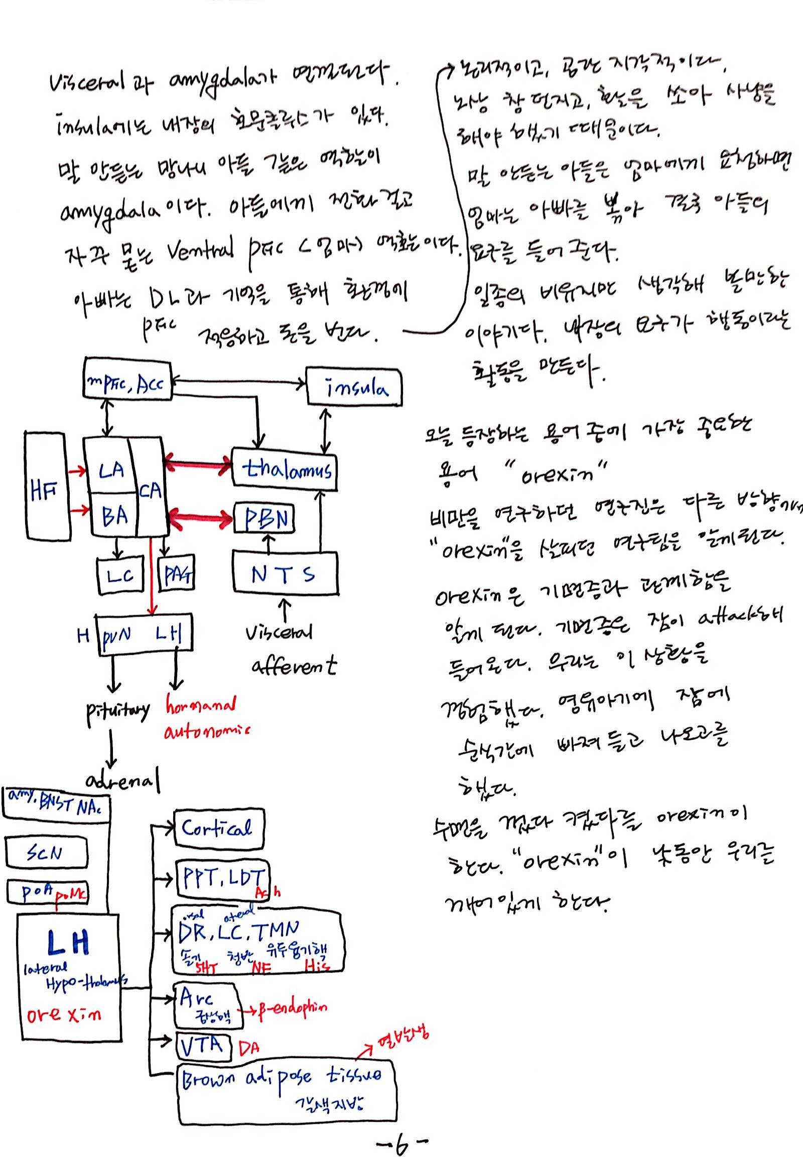 6강 기억의 확장, 꿈 (6).jpg