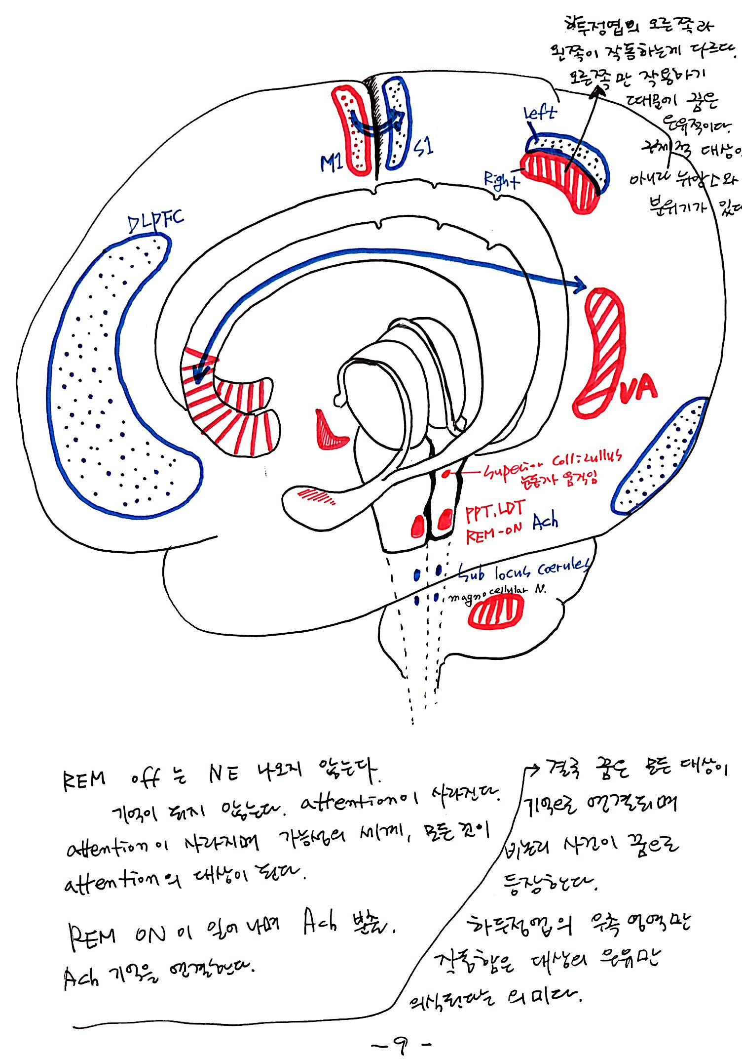 6강 기억의 확장, 꿈 (9).jpg