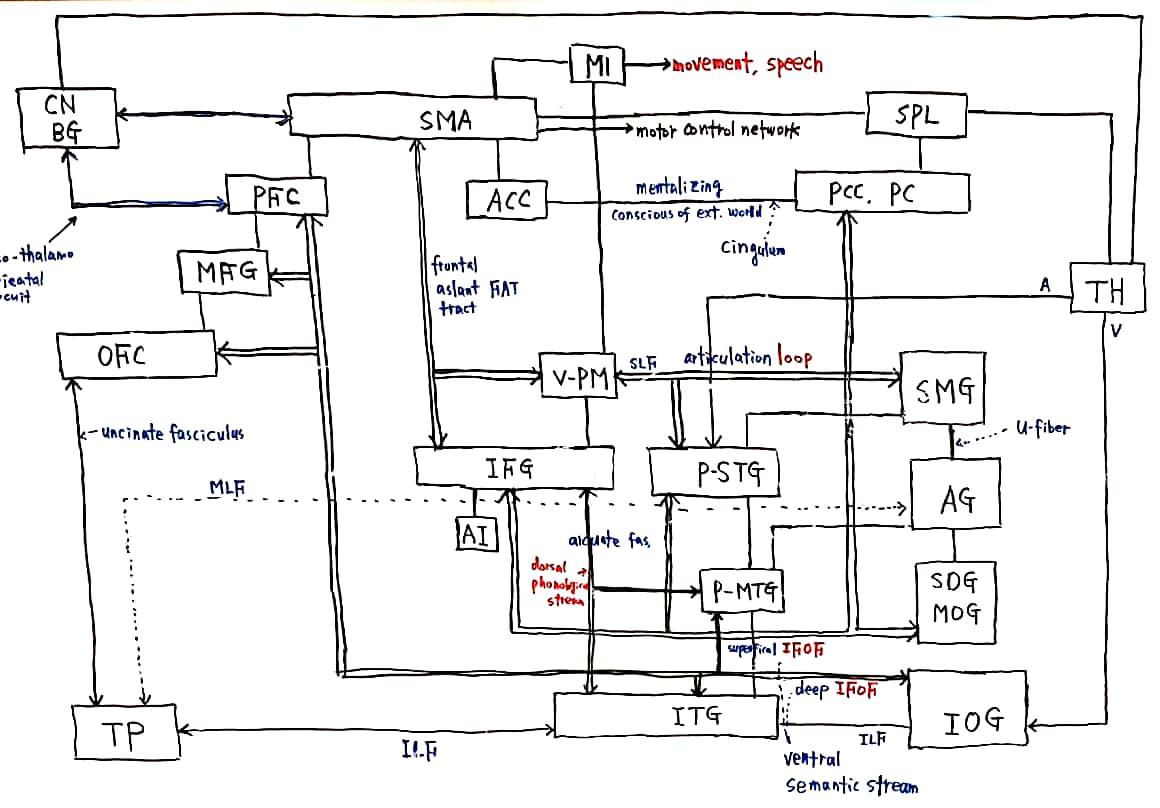 20-44 과학리딩_2.jpg