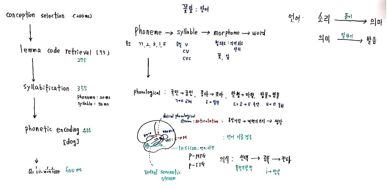 20-44 과학리딩_4.jpg