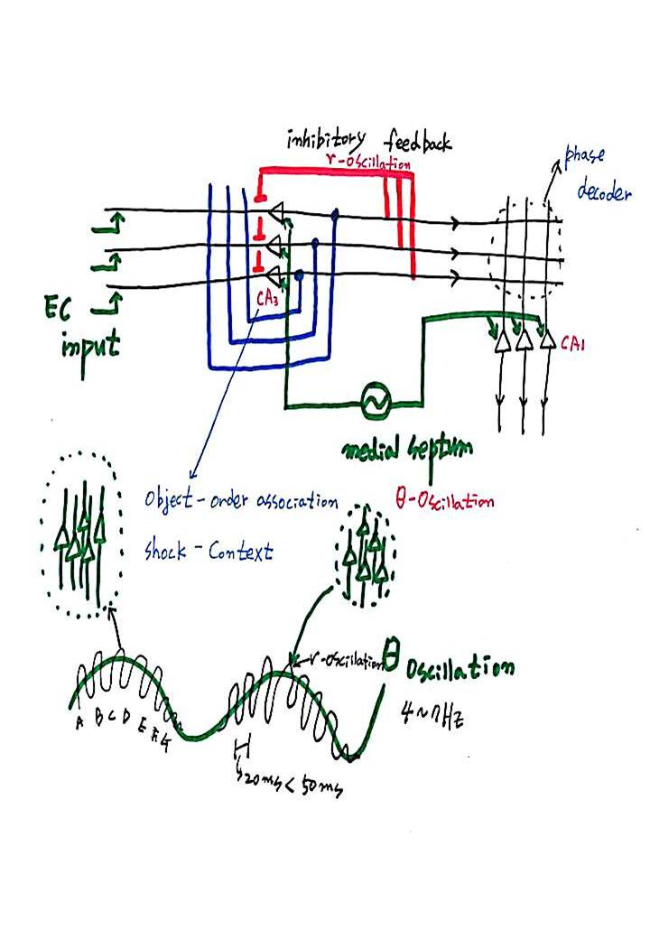 제 8회 특별한 뇌과학 4강 - 기억 (1).JPG