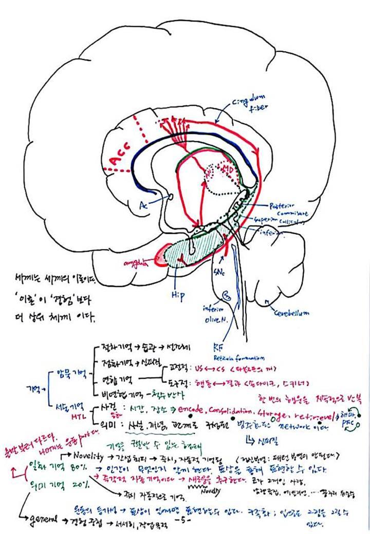 제 8회 특별한 뇌과학 4강 - 기억 (7).JPG