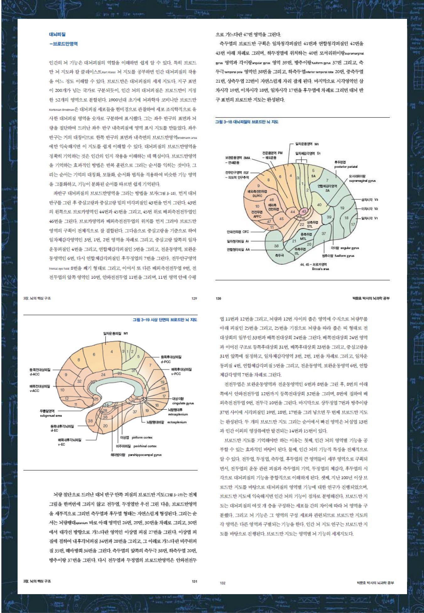 뇌과학공부_소개_07.jpg