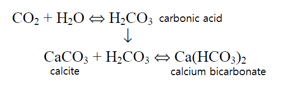 calcium bicarbonate.png